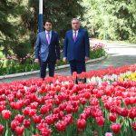 Лидер нации Эмомали Рахмон посетил парки культуры и отдыха города Душанбе